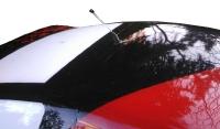 R.A Products 1:10 Autoantenne  Drift Rc Car Dachantenne Scale Federstahl